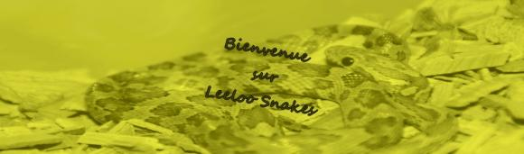 http://leeloo-snakes.cowblog.fr/images/Modules/IMG34512a.jpg
